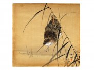Japanese Woodblock Print Snipe in Marsh by Okuhara Seiko